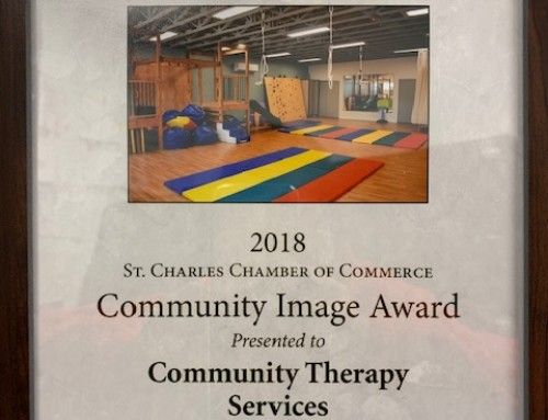2018 Community Image Award