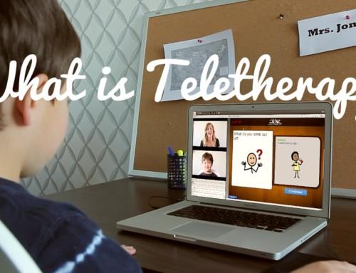 Teletherapy / Telehealth / Telepractice / Telemedicine